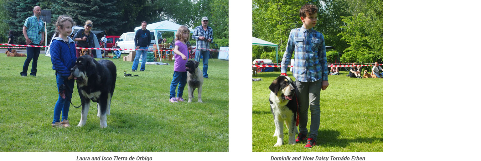 Club show of Moloss Club - Child and dog, Lali a Isco a Dominik a Daisy